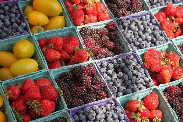 berries farmer plant science