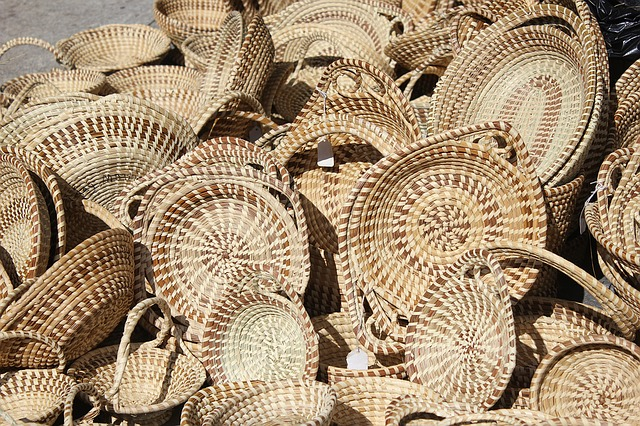 sacred useful plants baskets