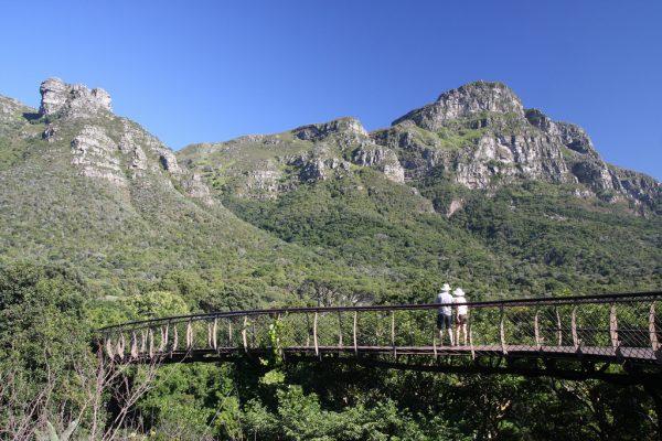 kirstenbosch national botanical garden south africa